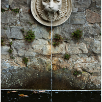 Lion's head at a fountain near Orangerie