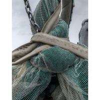 Fishing Net, Husum, Germany, 2013