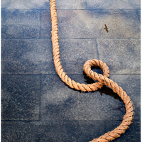 """Rope and Seagull"", Venice, Italy, 2018"
